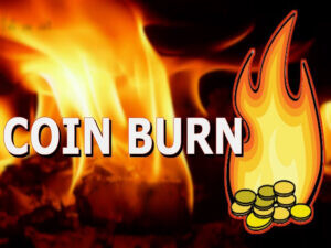 سوزاندن سکه Coin Burn