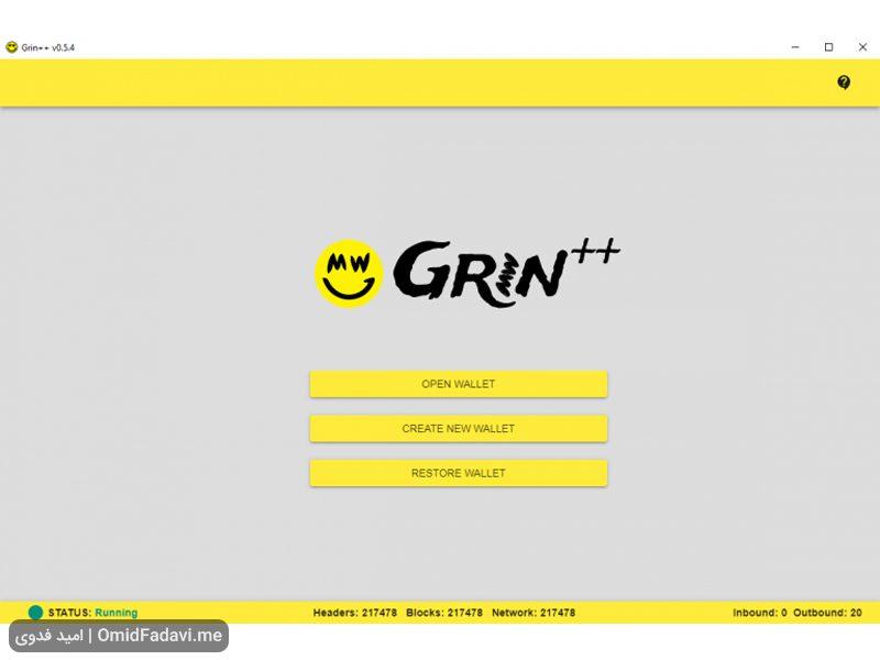 Grin Coin